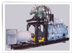 DIESEL ENGINE DRIVEN COMPRESSOR + 3 PHASE POWER ALTERNATOR